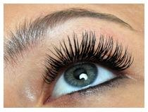 Flutter: Lashes Made Magical