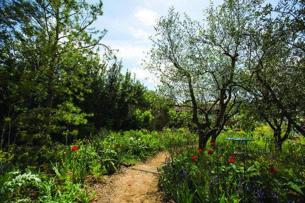 The L'Occitane Garden At Chelsea Flower Show