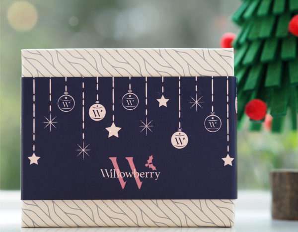 Willowberry Skin Care Christmas Set